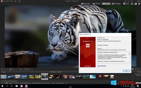 截圖 ACDSee Pro Windows 8