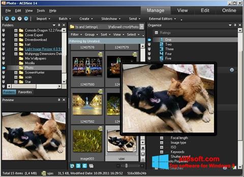 截圖 ACDSee Photo Manager Windows 8