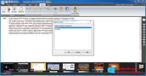 截圖 Snagit Windows 8
