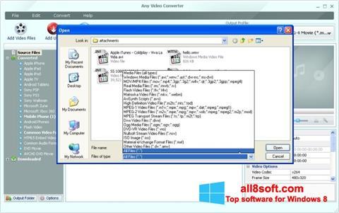 截圖 Any Video Converter Windows 8