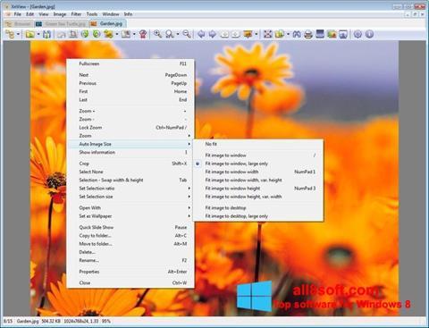 截圖 XnView Windows 8