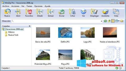 截圖 WinZip Windows 8